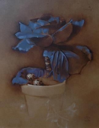 Rebecca C Gray, Cabbage w Quail Eggs, study, 2009.