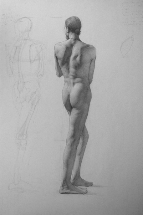 Rebecca C Gray, Standing Male Nude from Back, 2013.
